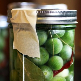Green Tomato Refrigerator Pickles